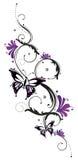 Цветки, бабочка, усик Стоковое фото RF