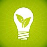 生态绿色电灯泡 库存图片