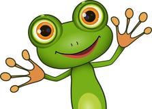 绿色逗人喜爱的青蛙 免版税库存图片