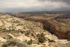 对峡谷的风景看法。盛大楼梯埃斯卡兰蒂,犹他,美国 库存照片