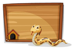 在一个空的委员会前面的一条蛇 库存照片