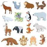 被设置的各种各样的野生生物动物 免版税库存照片