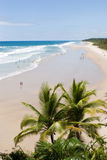 Рисуночный тропический пляж Стоковое фото RF