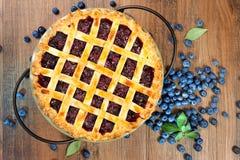 Пирог голубики Стоковые Фото