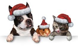 圣诞节宠物标志 库存图片