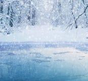 Озеро леса зимы Стоковое фото RF