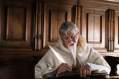 Μοναχός που γράφει με το καλάμι Στοκ Εικόνες