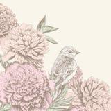 葡萄酒与鸟的花背景 免版税库存照片