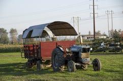 在农场的老种田的卡车 免版税库存图片