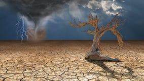 Ражи шторма в пустыне Стоковые Изображения RF