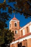 考纳斯大教堂大教堂 免版税库存图片