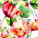与郁金香和鸦片花的无缝的样式 免版税库存照片