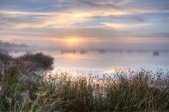 在沼泽的巨大有薄雾的日落 免版税图库摄影