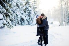 年轻夫妇在冬天公园 免版税图库摄影