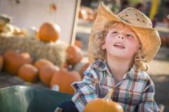牛仔帽的小男孩在南瓜补丁 库存图片