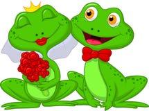 新娘和新郎青蛙漫画人物 图库摄影
