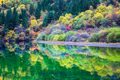 秋天颜色大量在湖的 免版税库存图片