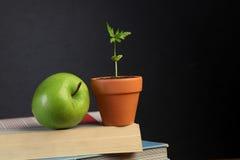 书、苹果和植物 免版税库存图片
