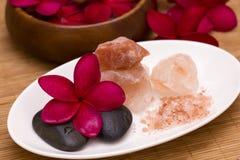与盐肥皂的红色赤素馨花 免版税库存图片