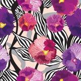 Цветет безшовная предпосылка. Флористическая безшовная текстура с цветками. Векторная графика. Стоковое Изображение RF