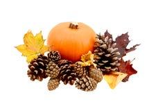 秋天叶子和杉木锥体用一个成熟南瓜 免版税库存照片