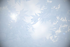 Υπόβαθρο πένθους με τα φύλλα στις σκιές του γκρι Στοκ εικόνα με δικαίωμα ελεύθερης χρήσης