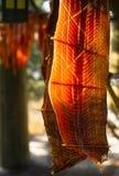 大马哈鱼垂悬美国本地人小屋干燥的鱼肉抓住 库存图片