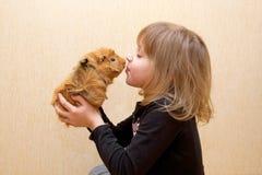Ребенок целуя морскую свинку. Влюбленность для животных Стоковая Фотография