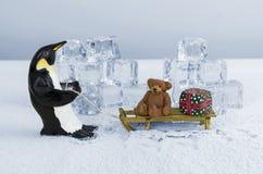 Пингвин вытягивая скелетон Стоковые Фотографии RF