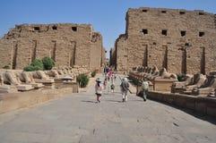 卡纳克神庙寺庙在埃及 免版税库存照片