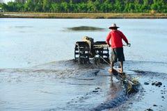 犁米领域的农夫 库存照片