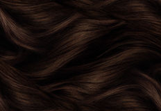 布朗头发纹理 免版税库存图片