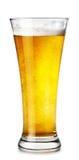 杯低度黄啤酒 库存图片