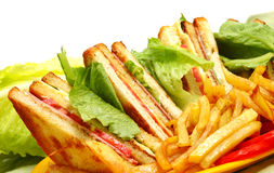 雅致的三明治 免版税图库摄影
