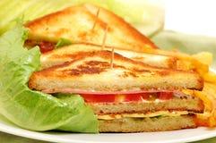 сандвич клуба с богатым вкусом Стоковые Изображения RF