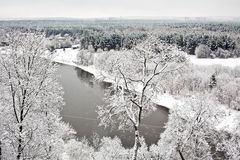 在雪下的维尔纽斯 免版税库存照片