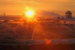 Восход солнца поля клюквы, Ричмонд, Британская Колумбия Стоковая Фотография RF