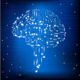 脑子电路 免版税库存照片