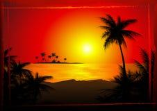 使热带的日落靠岸 免版税库存照片