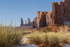 纪念碑谷红色岩石和植被 免版税库存图片
