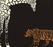 相反老虎和长颈鹿伪装 图库摄影