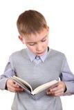 男孩读一本书 免版税库存照片