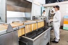 Μελισσοκόμος που εργάζεται στις εγκαταστάσεις εξαγωγής μελιού μέσα Στοκ φωτογραφίες με δικαίωμα ελεύθερης χρήσης