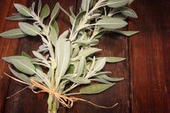 在木桌上的新鲜的贤哲植物 免版税库存图片