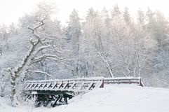 冬天风景。童话森林,桥梁,多雪的树 库存照片