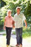 Романтичной пары постаретые серединой идя вдоль пути сельской местности Стоковая Фотография RF