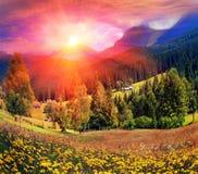 喀尔巴阡山脉的夏天 库存照片