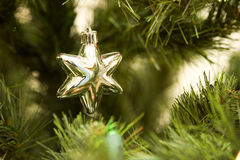стеклянная звезда Стоковое Изображение