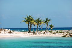 椰子海岛掌上型计算机 免版税库存图片