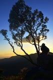 拍摄在日落期间的旅客 免版税库存照片